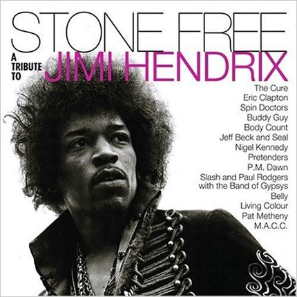 Stone Free: A Tribute to Jimi Hendrix Numbered Limited Edition MUSIC ON VINYL180g  2LP