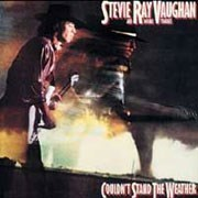 Stevie Ray Vaughan and Double Trouble Couldn't Stand The Weather Pure Pleasure180g 2LP