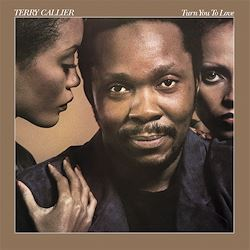 Terry Callier Turn You To Love 180g LP ELEKTRA Speakers Corner